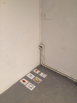 Grid and Peel (installation view)