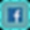facebook for website.png