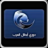 بطولة العرب.PNG