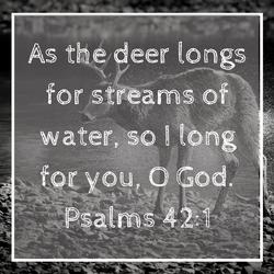 Psalms 42_1