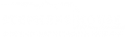 BISNF LogoAsset 16.png