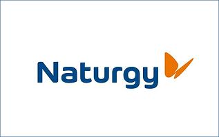 naturgy.png