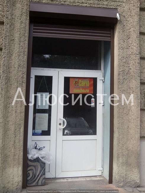 роллета на дверь Кузнецовская 36.jpg