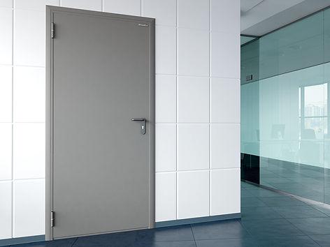 Техническая одностворчатая дверь.jpg