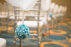 Ceremony- Chair Ball