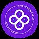 Chib Designed It LLC_ A Web Design Agency.png