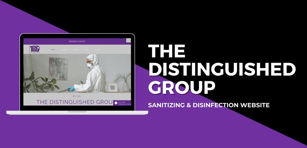 TDG Website Example.png