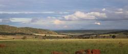 Bateleur Nature Reserve Plains