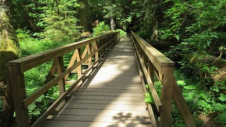 bridge-2142385_1920.jpg