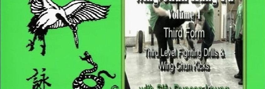 4 - 3rd Form, Fighting Drills Wing Chun Kicks