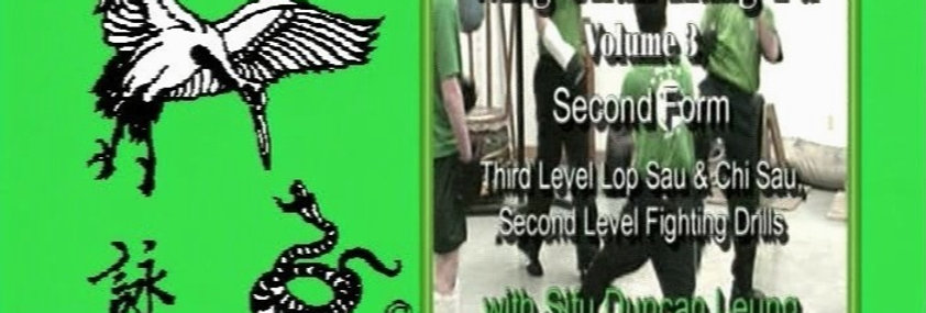 3 - 2nd Form, 3rd Level Chi Sau Lop Sau, Fighting Drills