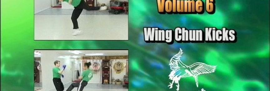 6 - Wing Chun 8 Kicks