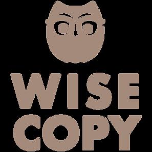 Wise Copy owl logo