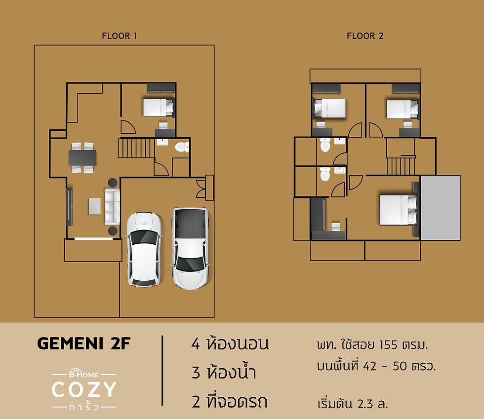 Gemini-2F.jpg