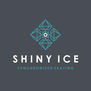 Shiny Ice Logo on dark.jpg