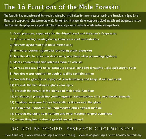 The 16 Fabulous Foreskin Functions - a critical analysis