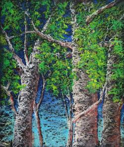 Paper Birch : Prodigal Journey