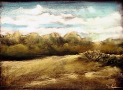 The Forest Edge : Heartland