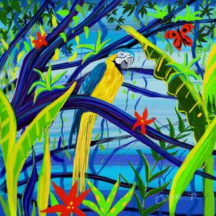 Rainforest Parrot. Procreate iPad drawing