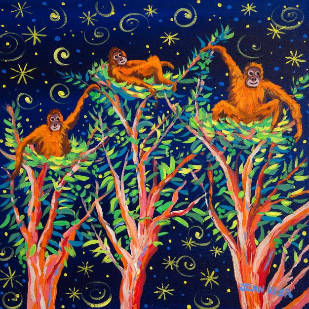 John Dyer Painting. Stargazing Orangutans, Borneo. 12 x 12 inches acrylic on canvas