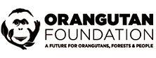 orangutan foundation.jpg
