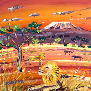 Sunset Lions, Kenya