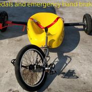 ludic option pedals .jpg
