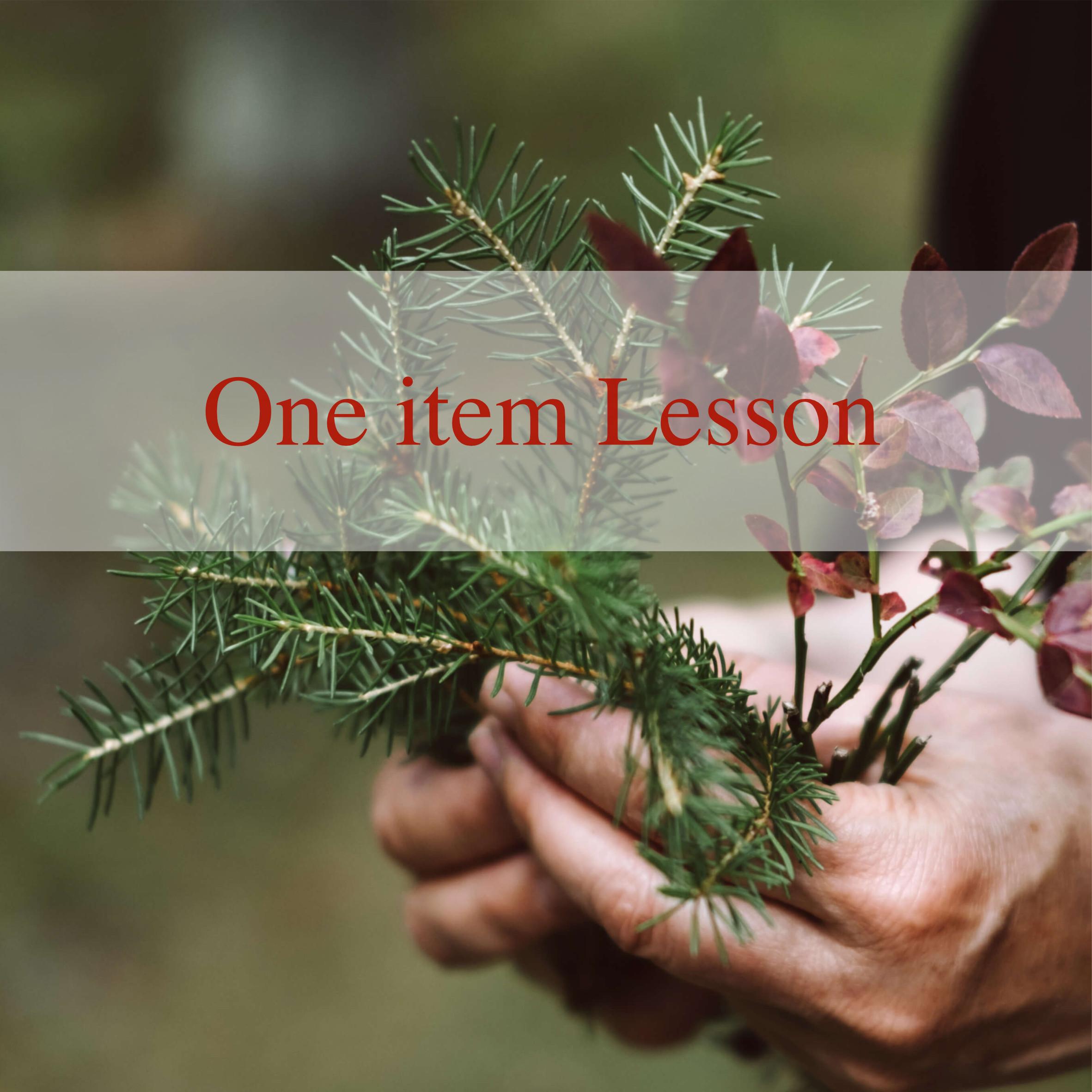 1 item lesson