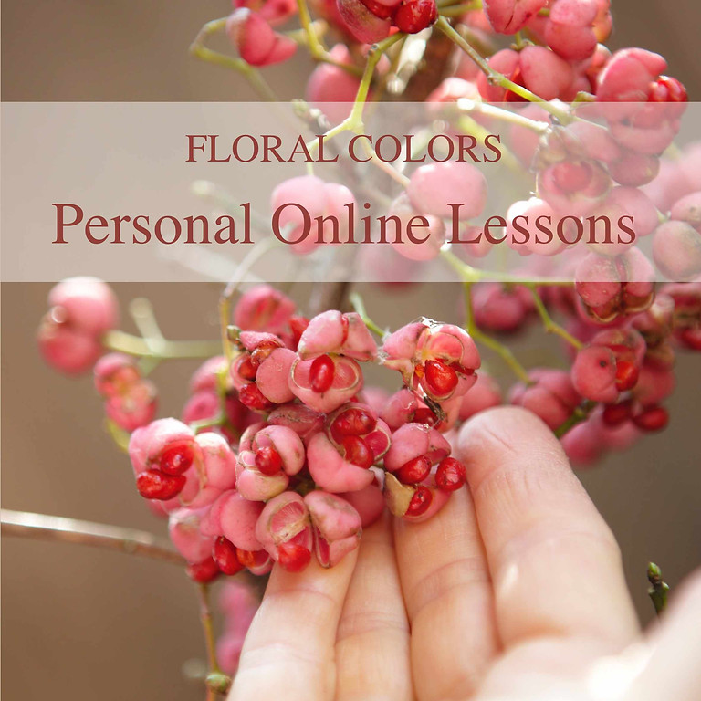 Personal Online Lesson with Gabriele