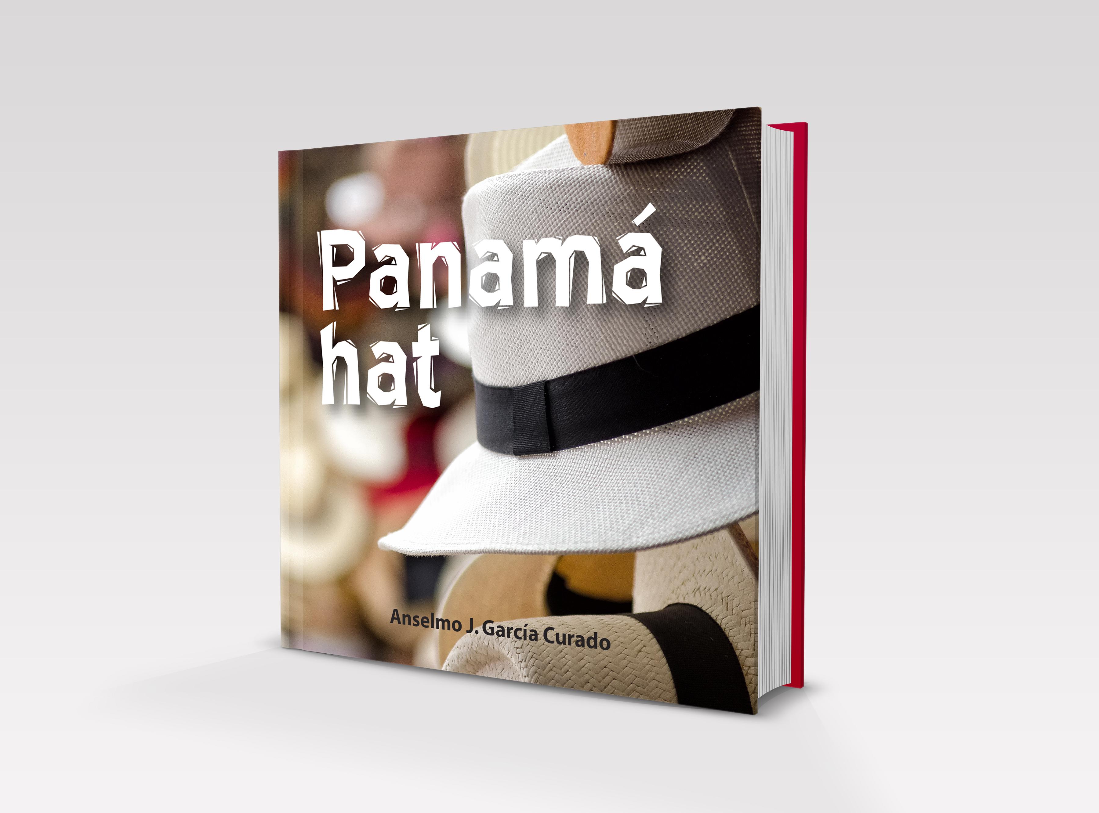 Panama hat b