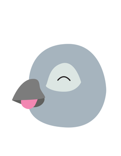 Bird Em