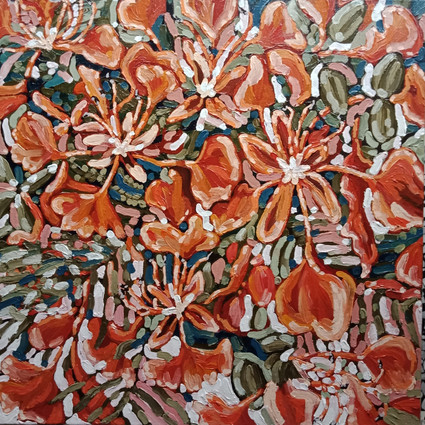 """""""OBSERVATIONS OF A POINCIANA"""""""