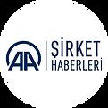 logo1_sirkethaberleri.png