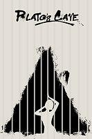 plato's cave poster.jpg