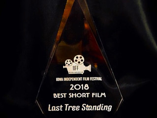 Last Tree Standing wins Best Short Film at the IIFF
