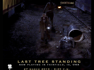 Last Tree Standing is now playing in Fairfield, IA, USA