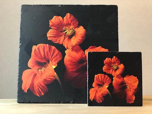 Sonbahar Kabak Çiçekleri Nihale Seti