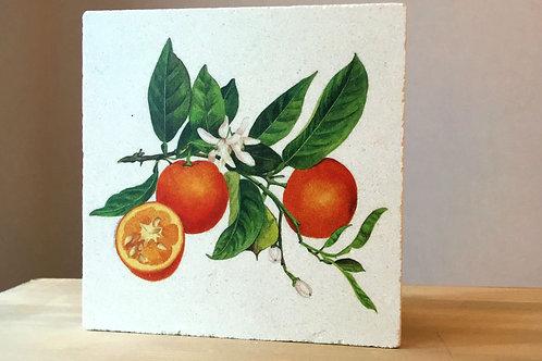 Traverten Taşı Nihale-Orange