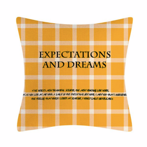 Pottery Barn Expectations and Dreams Kırlent