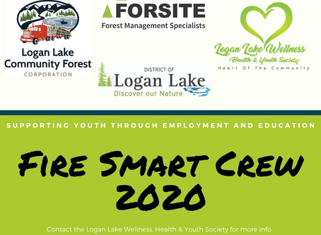 Fire Smart 2020