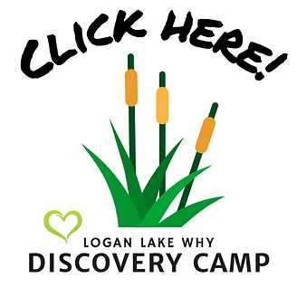 Click here Discovery camp logo-1.png