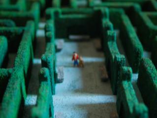 Dentro del laberinto