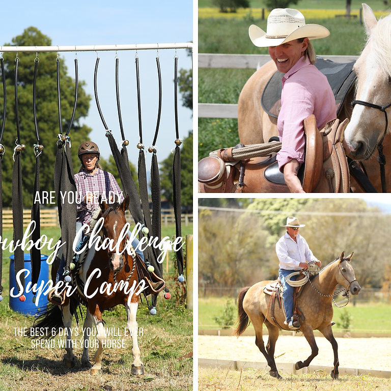 Super Camp with a Cowboy Challenge Twist/Beginners (1)