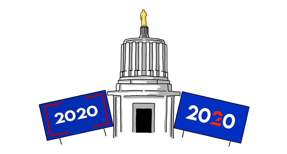 Illustration of the capital building with 2020 political lawn signs