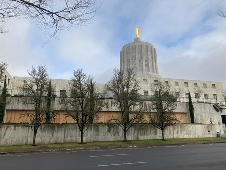 Willamette, Salem braces for potential armed protests at capitol