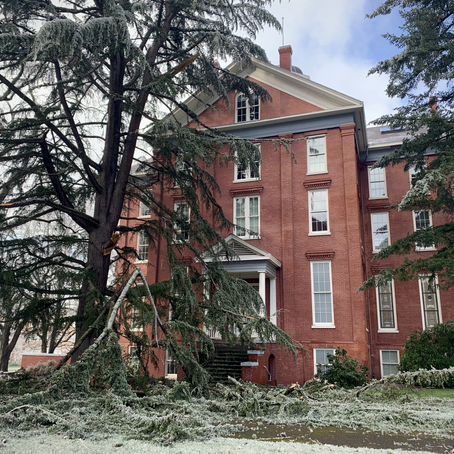 Photos: Ice storm pounds Willamette, damaging trees and structures