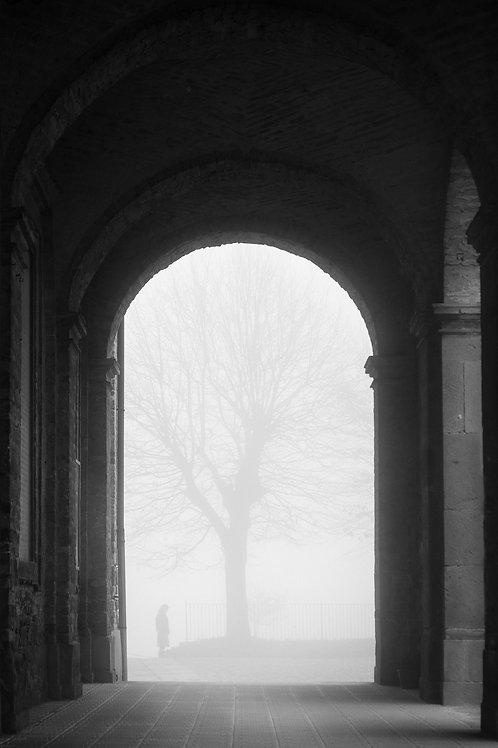 The Fog of Piedmont