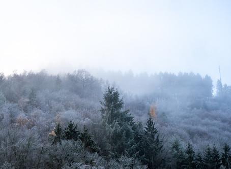 A frosty re-visit to the German Vulkaneifel region