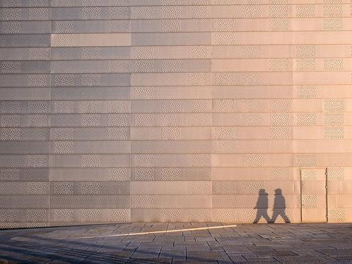Strolling Shadows