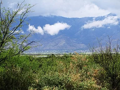Sierra Vista 2.jpg